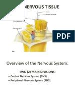 Histology of Nervous Tissue PESTE.pptx