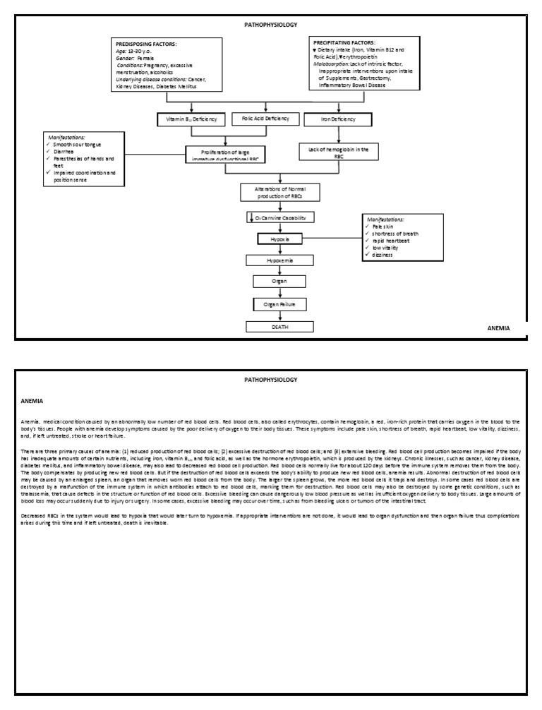 Anemia Pathophysiology on retinopathy of prematurity pathophysiology, ankylosing spondylitis pathophysiology, bronchiolitis pathophysiology, pleural effusion pathophysiology, unstable angina pathophysiology, mitral valve stenosis pathophysiology, cushing's syndrome pathophysiology, meningitis pathophysiology, nephrotic syndrome pathophysiology, aspiration pneumonia pathophysiology, cardiac tamponade pathophysiology, typhoid fever pathophysiology, sarcoidosis pathophysiology, atrial flutter pathophysiology, umbilical hernia pathophysiology, alzheimer's disease pathophysiology, chronic obstructive pulmonary disease pathophysiology, mitral valve regurgitation pathophysiology, aortic stenosis pathophysiology, cardiogenic shock pathophysiology,