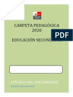 Carpeta Pedagogica 2020 - EDUCACIÓN SECUNDARIA- ADAPTABLE.docx