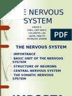 NERVOUS SYSTEM- CABIL(G6).pptx