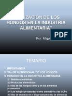 UTILIZACIÓN DE LOS HONGOS EN LA INDUSTRIA ALIMENTARIA.pdf