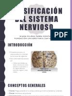 Generalidades del sistema nervioso-convertido