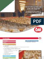 Desarrollo optimo del pollo cobb500