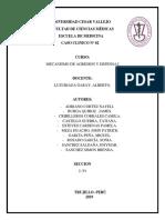 C.C. Nº2. INFORME.docx