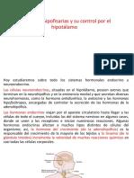 CLASE-1-ENDOCRINOLOGÍA.pptx