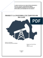 Ingineria Zacamintelor de Gaze Proiect.docx