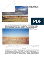 Desertul Atacama.docx