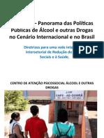 Diretrizes para uma rede integrada e intersetorial de Redução de Danos Sociais e a Saúde