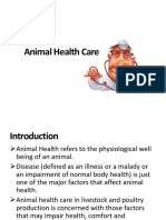 Animal Health Care.pptx