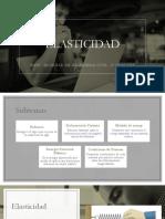 ELASTICIDAD-diapositivas.pptx