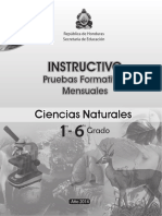 1ro a 6to - Instructivo Pruebas Formativas - Ciencias Naturales (2014)