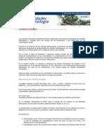 Modulo2_1 psicosociologia del cambio