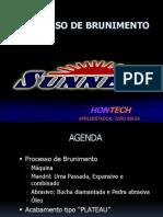 BRUNIMENTOMG(1).pdf