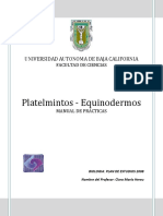 manual Platelmintos- Equinodermos