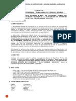TDR PISTAS Y VEREDAS ASTANYA.doc