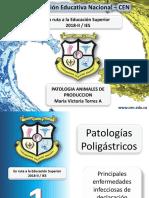 Presentacion # 1 Patologia  2018-2.pptx
