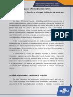 SEBRAE - Pequenas e Médias Empresas na Itália