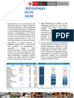 RRC_Lambayeque_2017_anual.pdf