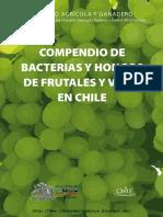 Compendio de Bacterias y Hongos de Frutales y Vides