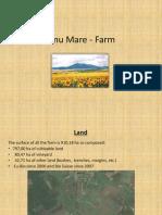 Jamu Mare Farm.ppt