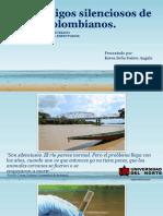 Los enemigos silenciosos de los ríos colombianos.pptx