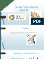 Comité de Convivencia Laboral Presentacion.pptx