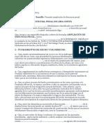 ampliacion denuncia penal.docx