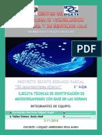 proyecto electronico.docx