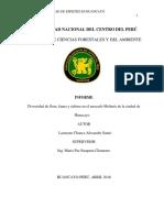 informe apa biodiversidad.docx