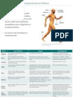 AvaliacaodosNervosPerifericosHanseniase.pdf