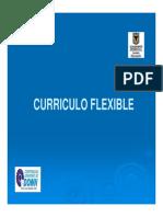 Curriculo flexible