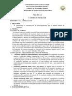 Hoja-Guía-Práctica-6-neubauer-mod.docx