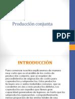producción conjunta.pptx