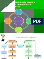Pectin project presentation.ppt