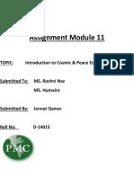 Assignment Module 11.docx