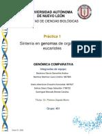 Practica 1G. Comparativa.docx