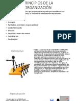 PRINCIPIOS DE LA ORGANIZACIÓN.pptx