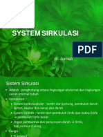 System CV