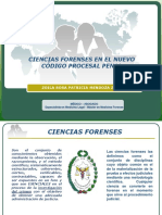 pericial_peru.pdf