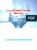 T2-Agua y Sales Minerales