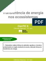 ctic8 - Transf. de energia nos ecossistemas