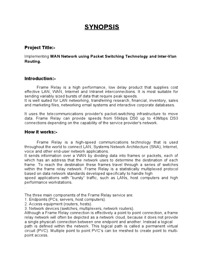 Synopsis Frame Relay   Virtual Private Network   Computer Network