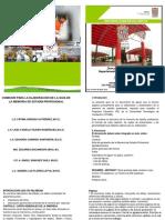 Guia-TSU-2019.pdf