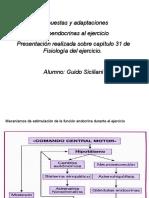 Respuestas y Adaptaciones en El Ejercicio Guido Siciliani