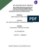 INVESTIGACION DE PETROFISICA.docx