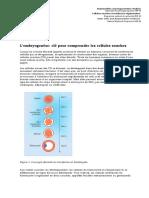 nfp63_embryonalentwicklung_f.pdf