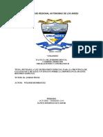 ENSAYO - REGIMEN ESPECIAL DE LA PROVINCIA DE GALAPAGOS.docx