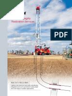 Wellbore Integrity Restoration Services Brochure.pdf