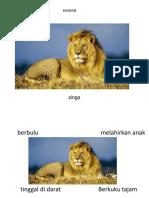 ciri-ciri haiwan.pptx