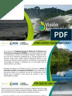 presentacion vision amazonia